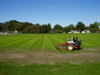 Soccer field first mowing, three weeks after seeding.