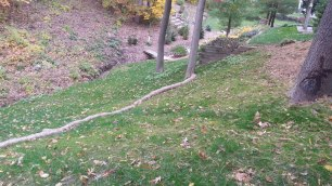 Steep hillside with erosion sock for establishment